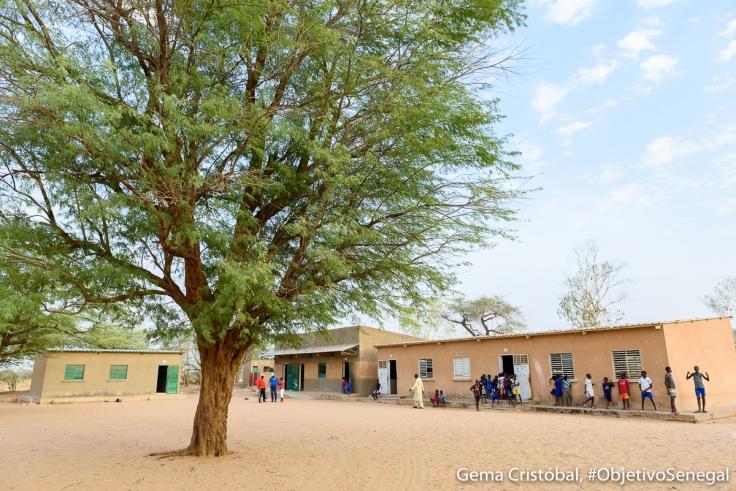 Senegal2020_309